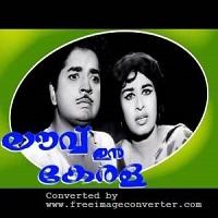 Photo of Love In Kerala