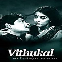 Photo of Vithukal