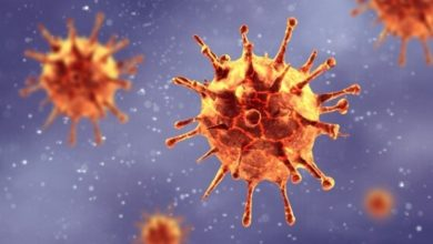 Photo of Coronavirus: The 2nd Phase Of The Global Epidemic Has Begun