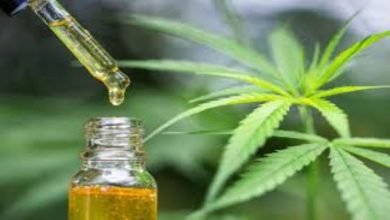 Photo of What is CBD, Uses and Its Benefits?