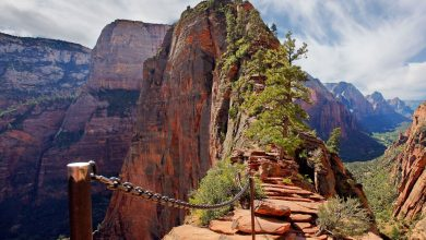 Photo of Your Guide to Experiencing Angels Landing and The Narrows in One Day