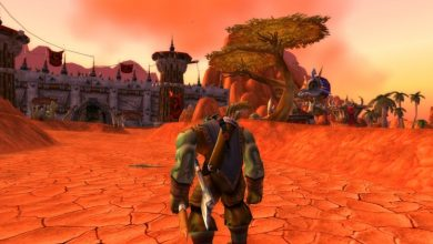 Photo of World of Warcraft: Classic – Some Things to Know