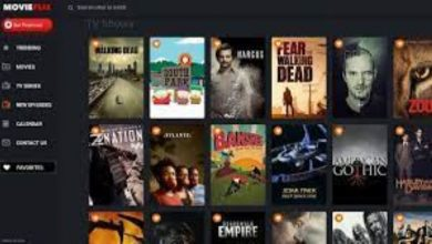 Photo of Moviesflix Verse – The Best Alternatives To Download The Latest Dubbed Movies on Moviesflix