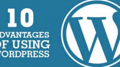 Photo of Advantages of Using Word Press Development Services for Building Websites