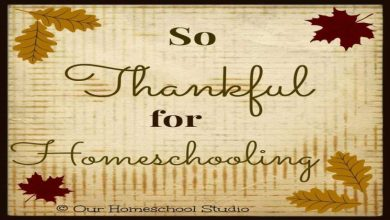 Photo of Reasons to be grateful for homeschooling