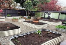Photo of The Benefits Of Growing Your Vegetables in Raised Beds