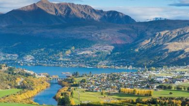 Photo of What is it like to live in New Zealand?