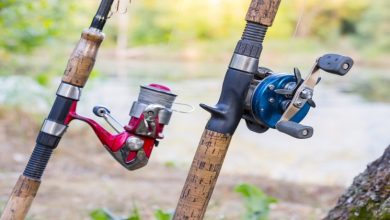 Photo of A Guide to using Reels for Fishing